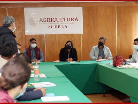 Contará campo poblano con profesionales para acompañamiento técnico a productores