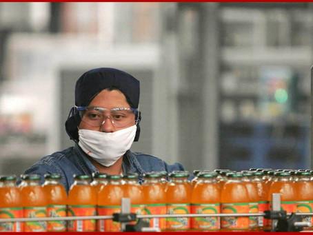 Fuerza laboral en México cuenta en promedio con preparatoria trunca