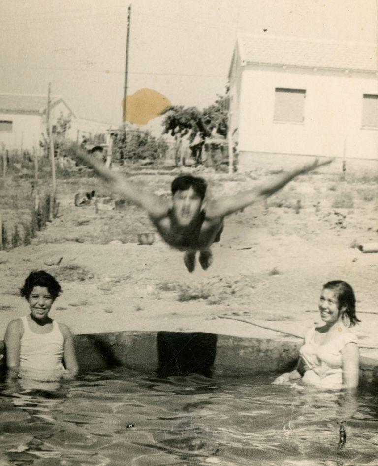 דוד כהן קופץ לבריכה שבנה בחצר ביתו, רחוב הברוש, שדרות, 1965