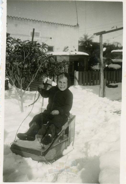 תמונת דוד נמרי במזחלת השלג, צילום יע