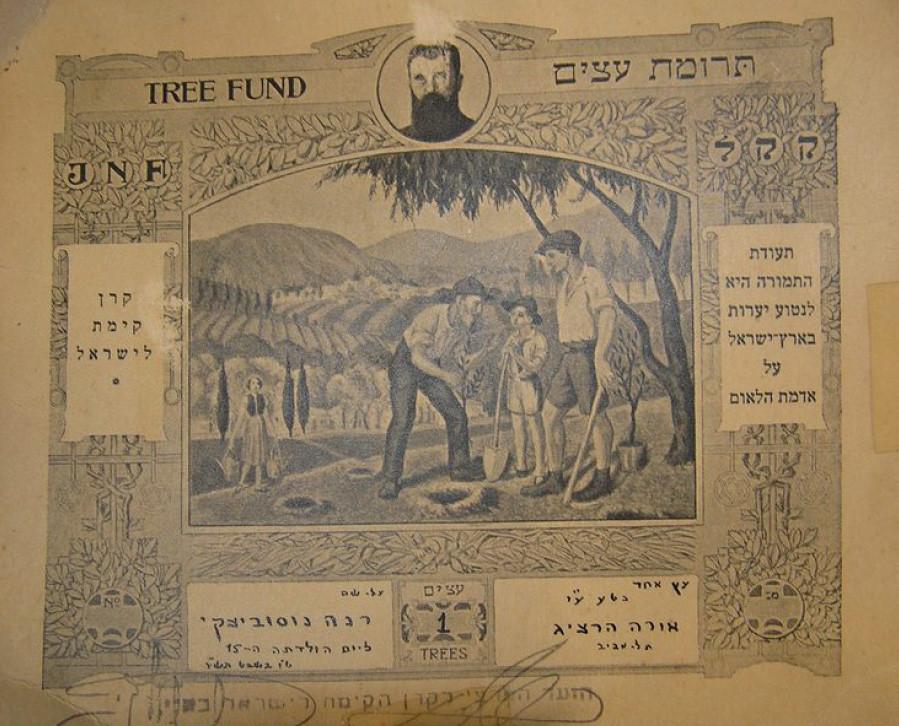 """תעודת עץ מטעם קק""""ל ע""""ש רנה נוסוביצקי (נצר), ט""""ו בשבט תש""""ז"""