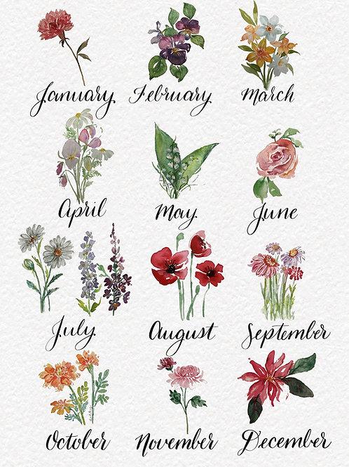 Botanical Birth Flower Guide