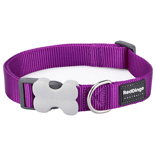 Red Dingo Classic Dog Collar Small 12mm (Purple)