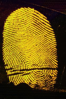 CSI-Fingerprint