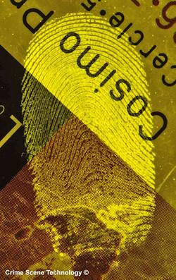 CST - Lumicyano Powder - Semi-porous surface.jpg