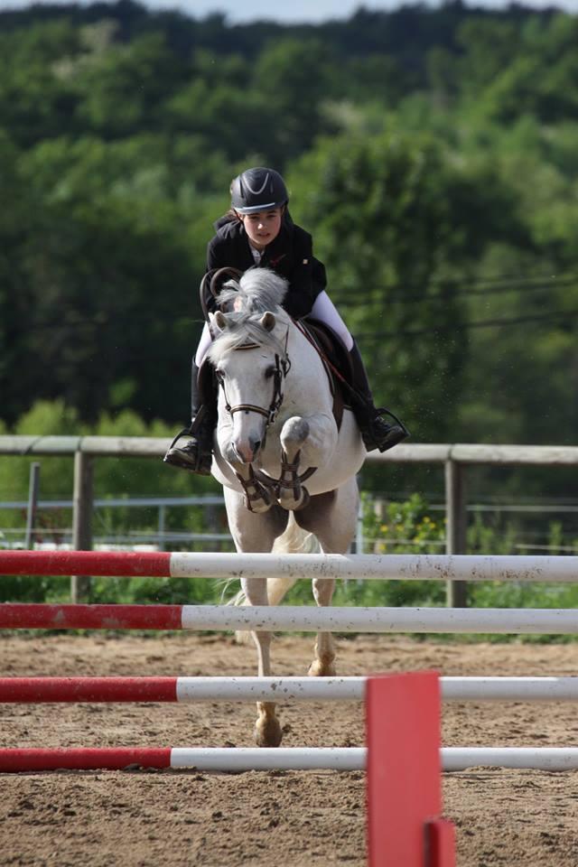 rufus dorson 2014 poney 1