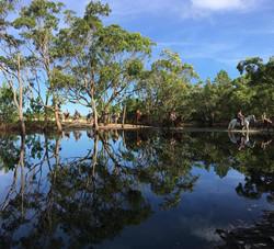 Parque Estadual do Rio Vermelho