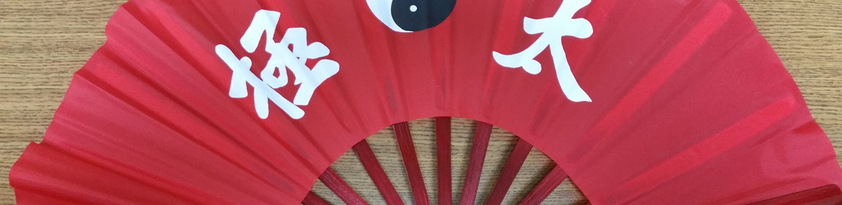 Tai Chi fan - red b