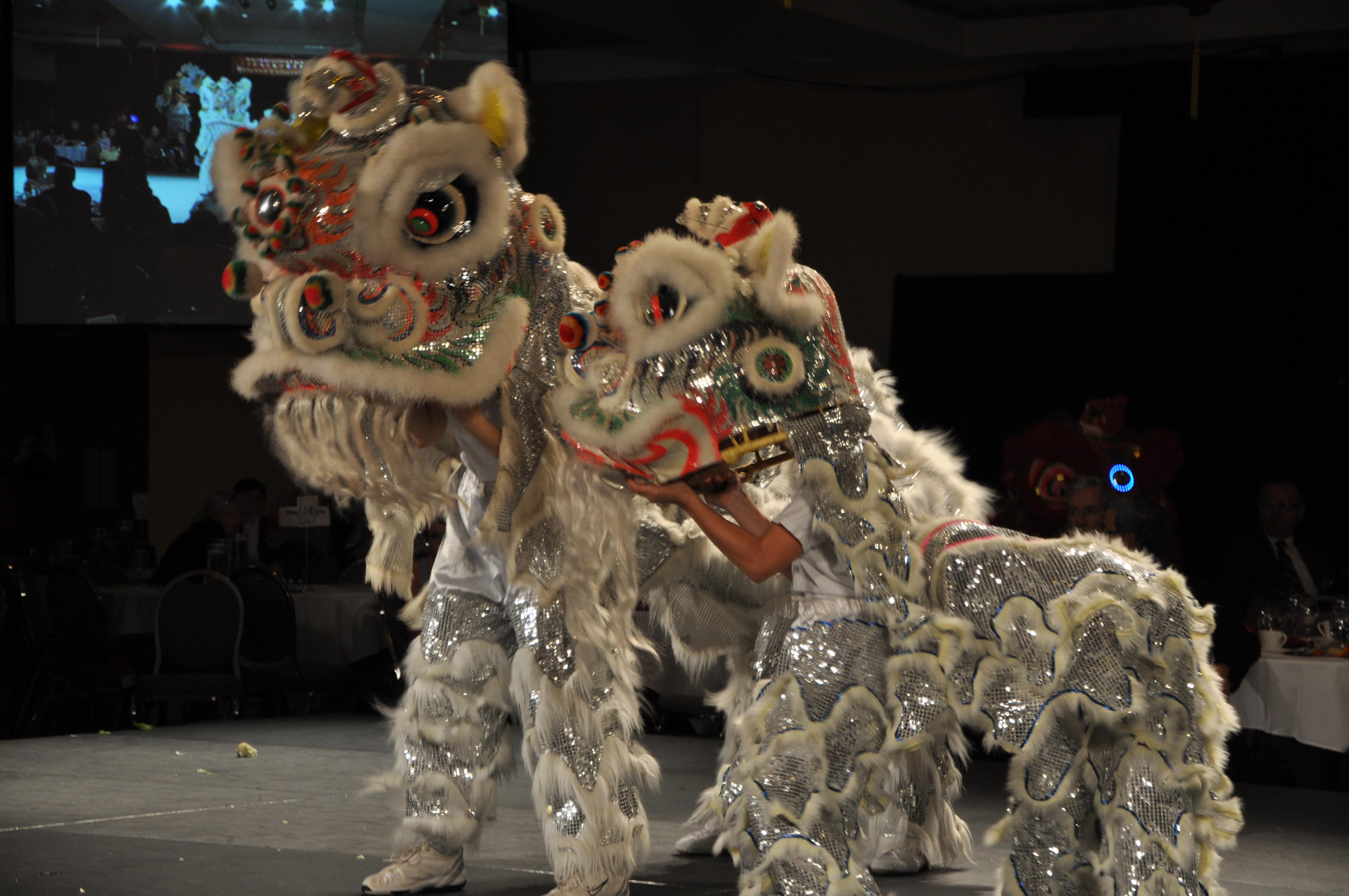 kungfuregina - Lion Story