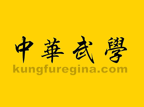 Teen Kung Fu ages 13-15