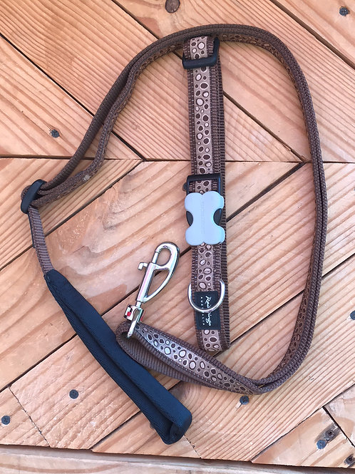 Set Large buckle collar and leash combo (Bedrock)