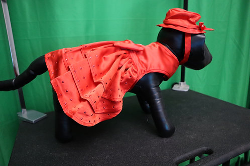 Large Red Dress Set (hat and leash)