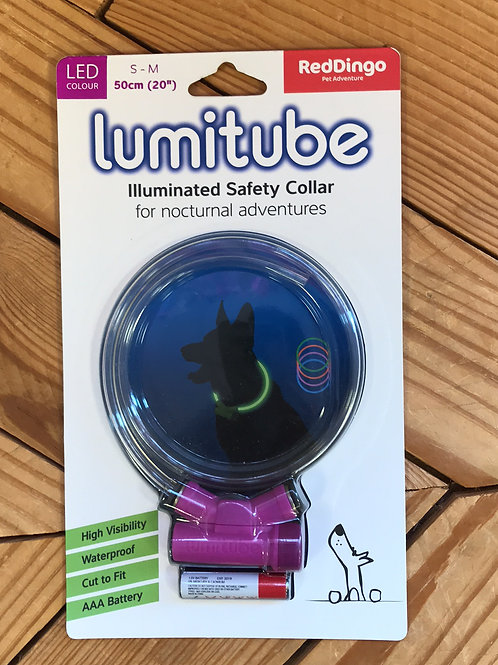 Dede's Favorite illuminating night walking collar