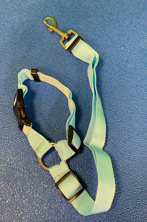 Turquoise pet seat belt hook over head rest