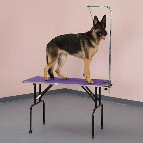"""36"""" Grooming table (READ AD)"""