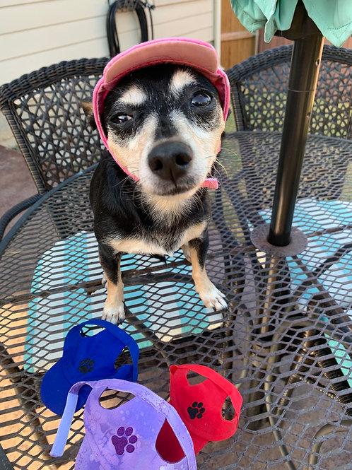 Cute Dog Hats