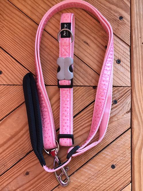 Set Large buckle collar & leash comb (Tiny Hearts)