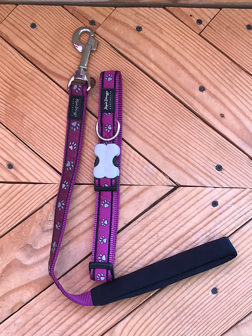 Set Large buckle collar and leash combo (Paw Print)