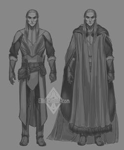 Henhireth's new light armor