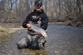 milwaukee steelhead