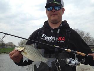 White bass to bluegills