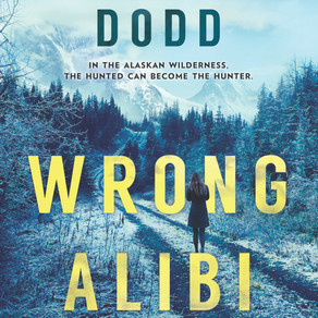 BLOG TOUR - WRONG ALIBI