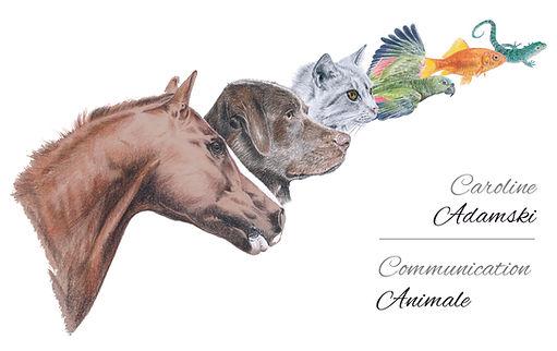 Logo CAdamski.jpg