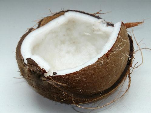 Turks Coconut Body Wash