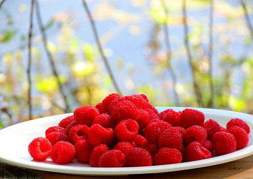 Red Raspberry Seed Oil Creamy Face Wash