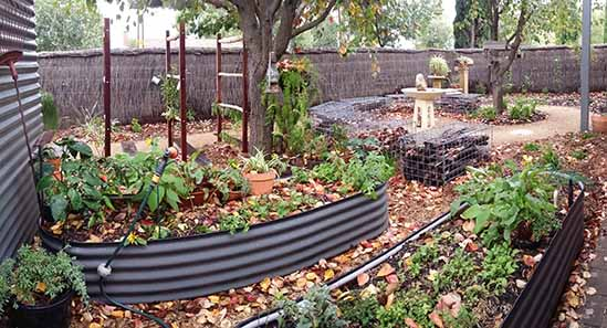 Raised Garden Vegetable Beds