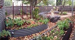 Raised Garden Vegetable Beds