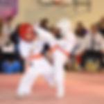 North+Island+Karate.jpg
