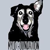 mylo foundation logo.jpg