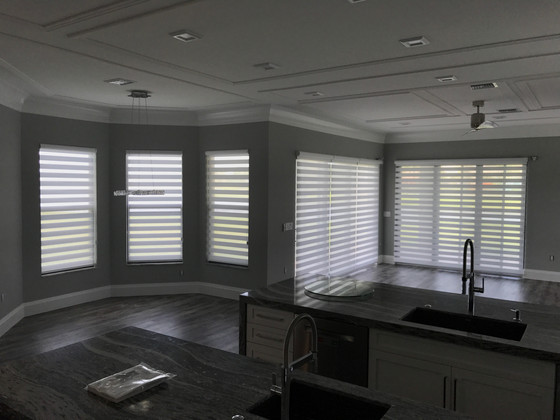 Recent Projects: Roller Shades