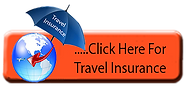 Travel insurance orange.png