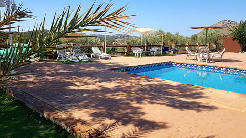 A view of the pool area