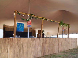 Festival Cocktails