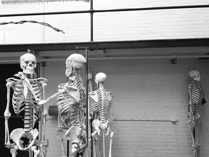 Skeleton Process