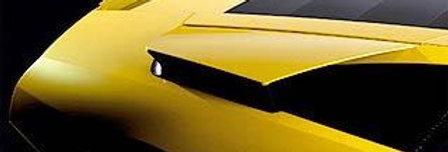 2001 - 2010 Murcielago Fiberglass Bat Wings