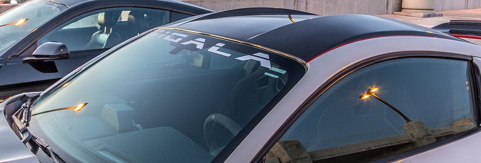 2015 - 2019 Mustang GT350RR Carbon Fiber Roof