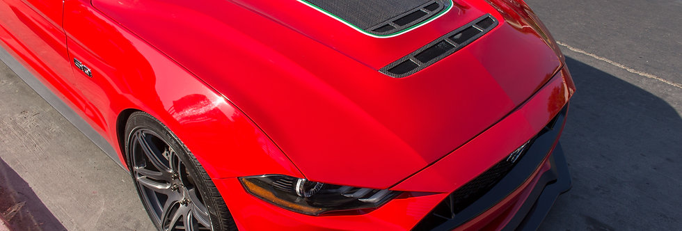 2018 - 2019 Mustang Sigala Carbon Fiber Vented Hood