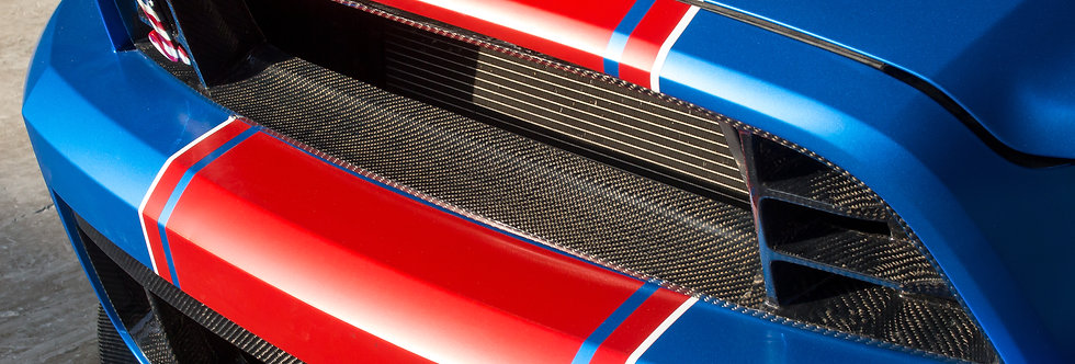 2010 - 2014 Mustang GT500 Style Carbon Fiber Upper Grille