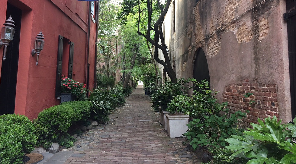 Charleston Horizontal Path cropped.jpg