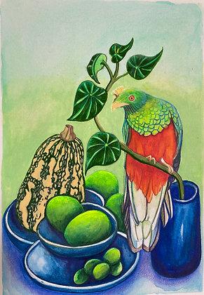 Quetzal, frutas y verduras - Ana Maria Velasco