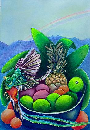 Quetzal, frutas y arcoíris - Ana Maria Velasco