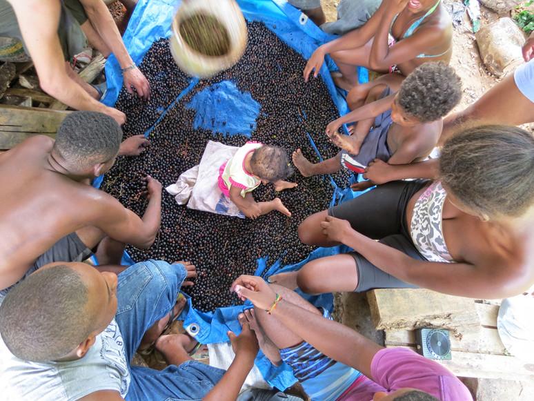 Feira celebra a agroecologia, protagonismo e a luta em defesa dos territórios tradicionais