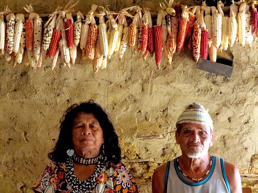 Preservar é Resistir - Festa do Milho Aldeia Araponga