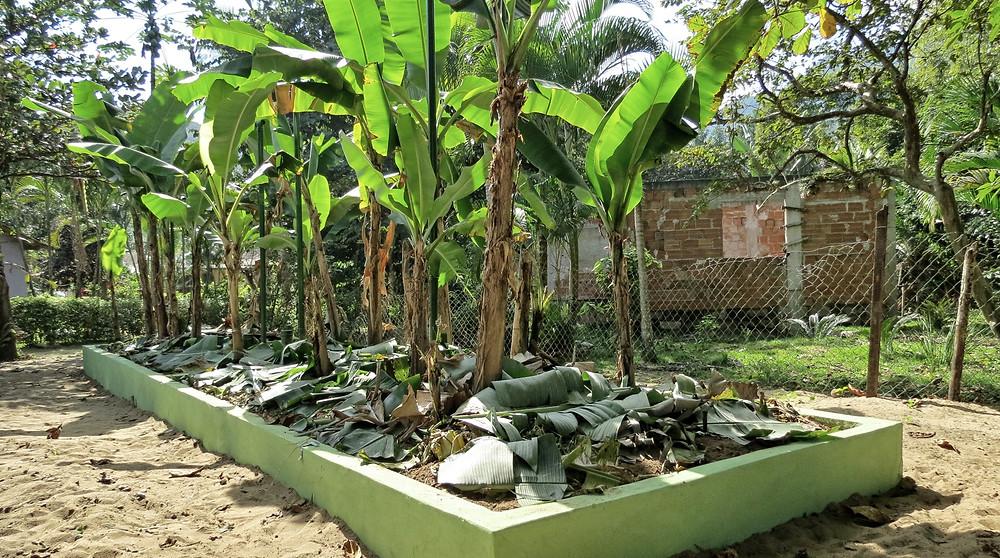 Preservar é Resistir - Saneamento Ecológico