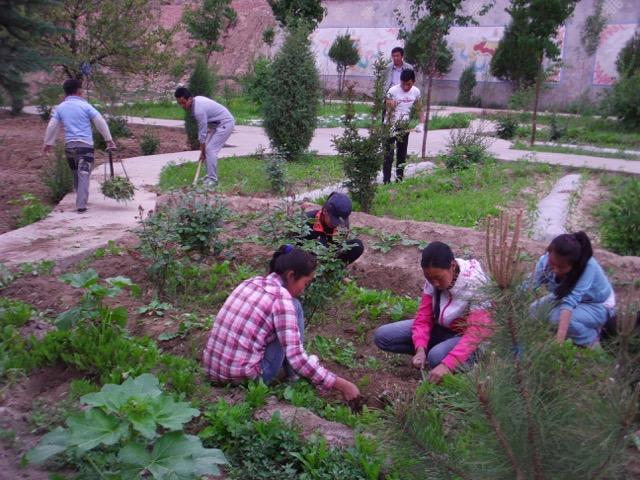 Gardening 2015