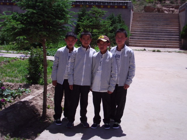 Our handsome Tibetan boys